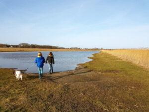 Texel-vakantiehuisje huren De Krim Texel wandelen